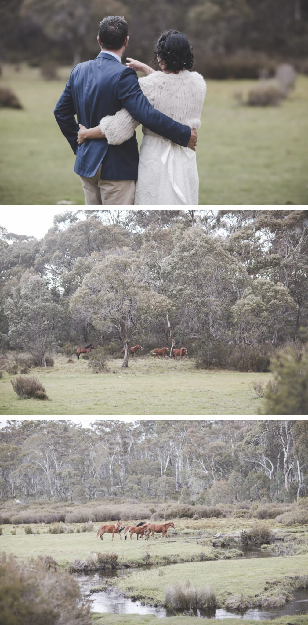 tumbarumba-batlow-wedding-by-peppermint-studios-wagga-wagga-wedding-photographer-at-bago-state-forest_1545