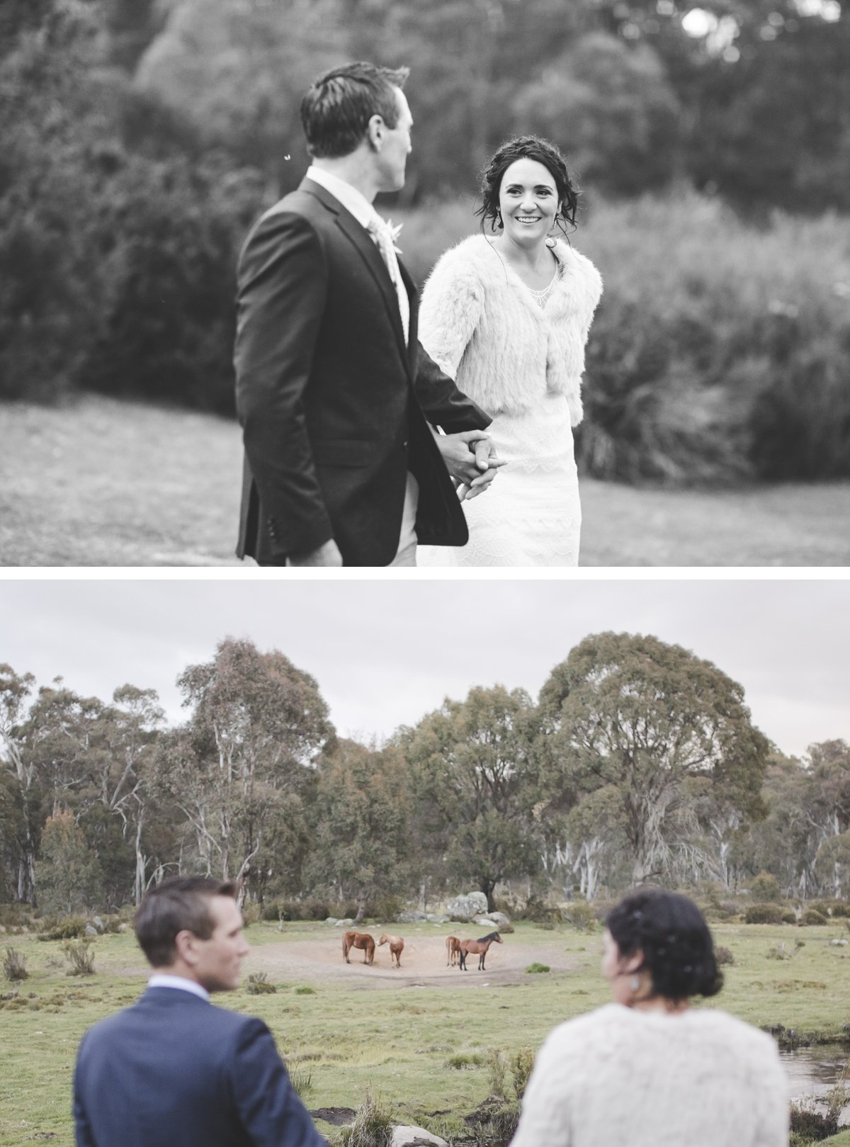 tumbarumba-batlow-wedding-by-peppermint-studios-wagga-wagga-wedding-photographer-at-bago-state-forest_1550